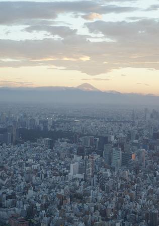 Mt. Fuji from the Tokyo SkyTree!