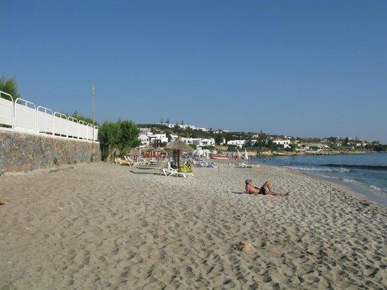 Hersonissos Hotel: Пляж утром.