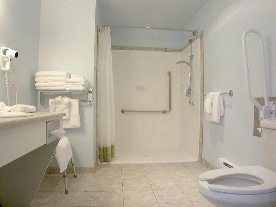 New Horizon Motel: Walk-in shower in the Full HC Accessible unit