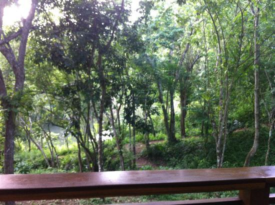 Mystic River Resort: View from the room