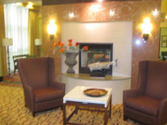 Hampton Inn & Suites Woodstock : Fireplace