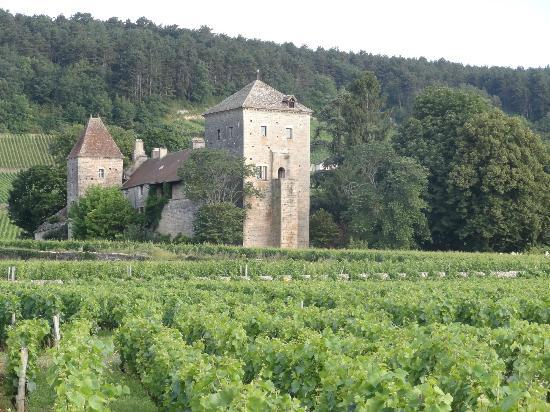 Hotel Les Grands Crus: View from room too .....