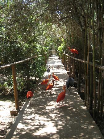 Zoo Natura Parc