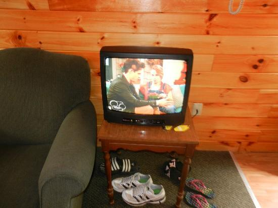 Twin Birches: the tiny TV