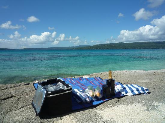 The Havannah, Vanuatu: Picnic
