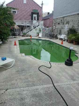 Lamothe House Hotel: Green Pool. Staff said it OK for use.