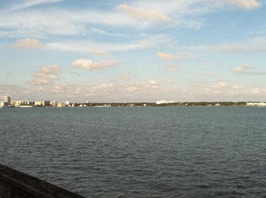 Backwater's on Sand Key: the view from the dock in back