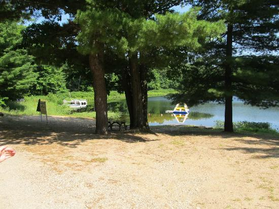 Bluegill Lake Campground: The beach from the road. Nice shaded area to sit if you want to get out of the sun.