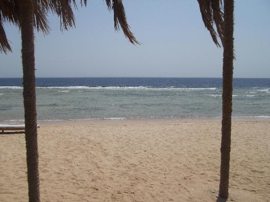 Al Nabila Grand Bay Makadi: beach area