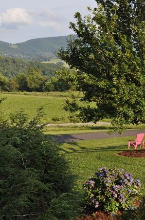 Harmony Hill Bed & Breakfast: View of the mountains