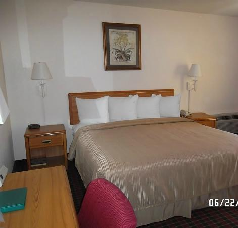 Quality Inn and Suites Capitola By the Sea: Bed