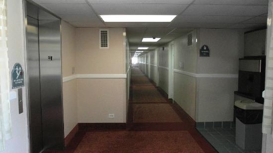La Quinta Inn Chicago Oakbrook Terrace: Hallway.