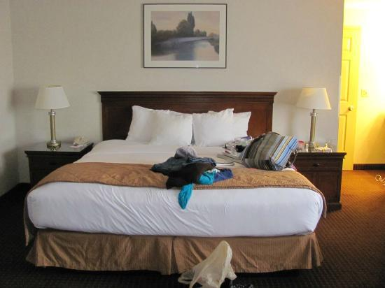 Clarion Hotel Seattle Federal Way: king size bed, we could have fit 4 people on there
