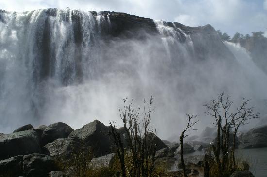 Thrissur, India: Bottom Spray