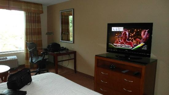 Hilton Garden Inn Chicago / Oakbrook Terrace: Flat screen TV and comfortable desk chair.