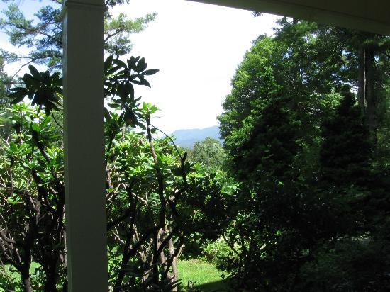 The Yellow House on Plott Creek Road: View from front porch of house