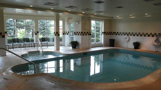 Hilton Garden Inn Oakbrook Terrace: Small indoor pool.