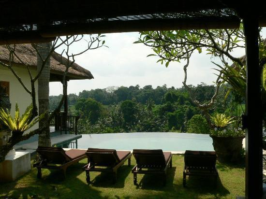Gayatri Villa : Amazing Pool Views