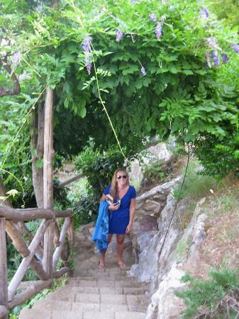 Cristina Hotel: The terrace garden