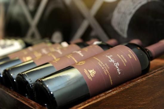 Adega Brasilis: Luigi Bosca, uma vinícola maravilhosa da Argentina!