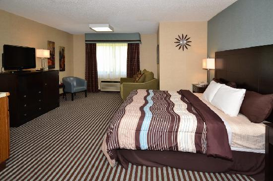 Days Inn Airport & Conference Center: Business King Room