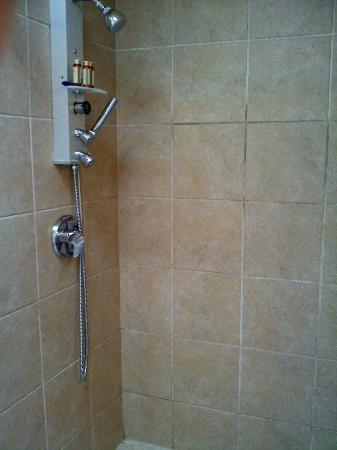 West Sonoma Inn & Spa: Wonderful Showerhead