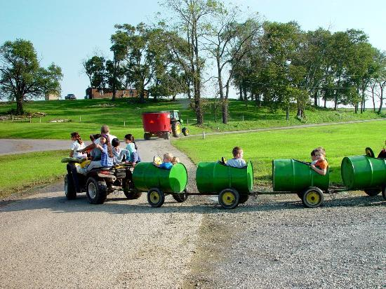Rocky Acre Farm B&B: Kids LOVE this ride!!
