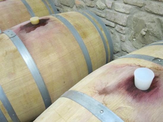 Fattoria Poggio Alloro: Wine barrels