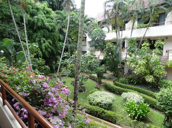 Swiss Palm Beach : Le cadre de verdure