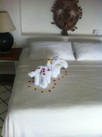 Casa Cuitlateca: Towel display on our bed upon arrival :)