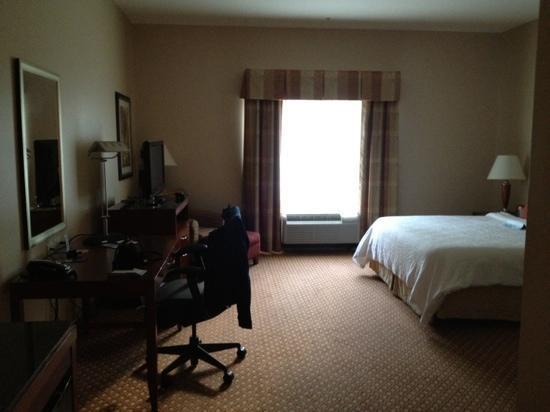 Hilton Garden Inn Hamilton: room