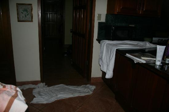 Mirasol Beach Apartment: water leaks
