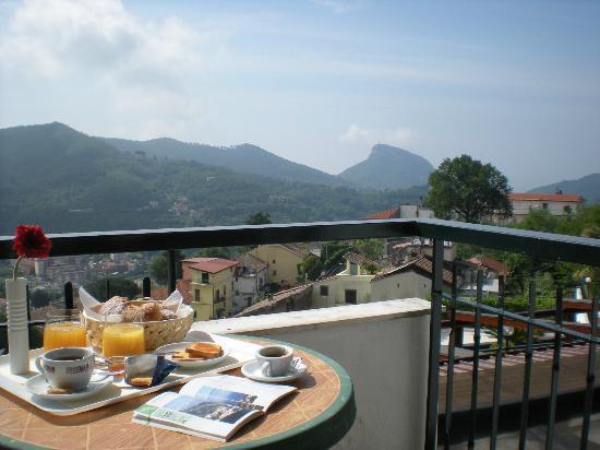 Hotel Pineta  Ristorante Castello: Vista da camera