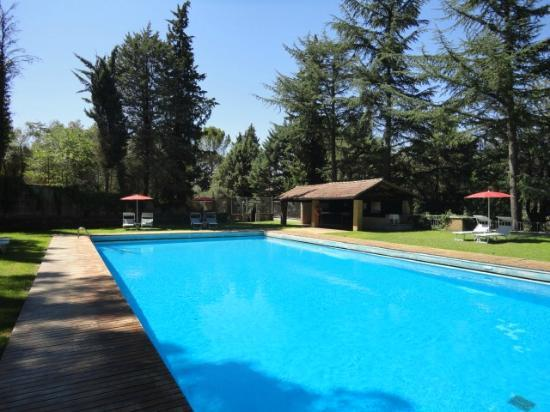 Pool July 2012 Picture Of La Badia Di Orvieto Orvieto Tripadvisor