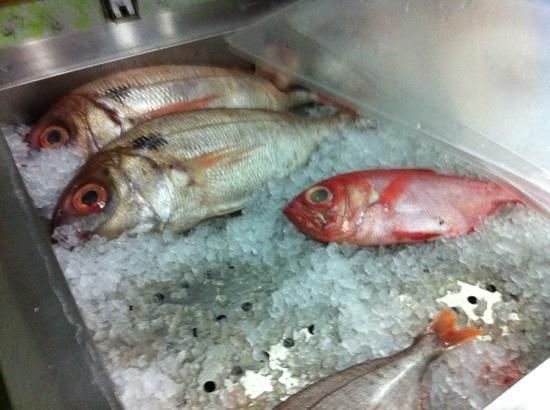 Delicias do Mar: Färsk fisk