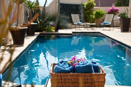 Cape Flame Guest House: Pool