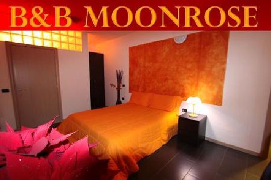 B&B Moonrose Malpensa: getlstd_property_photo