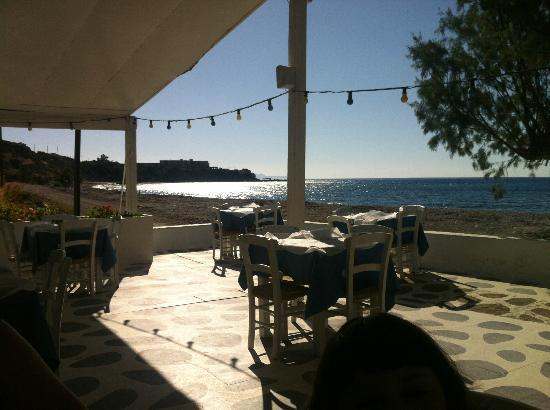 Avra Beach Studios: Tavern