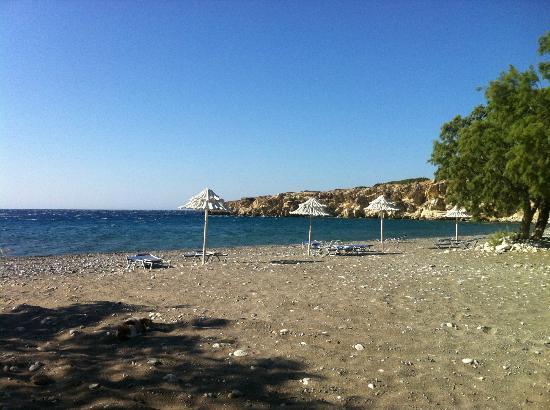 Avra Beach Studios: beach