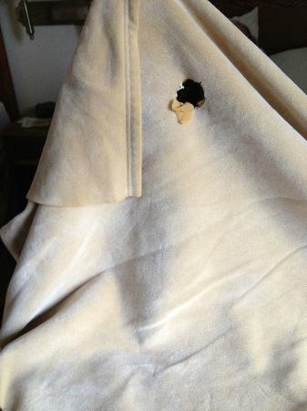 La Quinta Inn & Suites Minneapolis Northwest: One of the many burn holes in blanket
