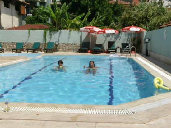 Lemon Tree Hotel : pool