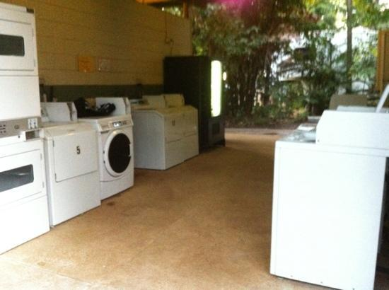 BIG4 Howard Springs Holiday Park : large laundry, drinks and snack machine