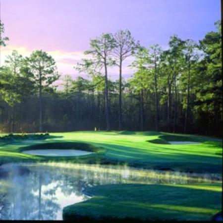 Pine Needles Resort and Country Club: Golf Course - 3rd Hole