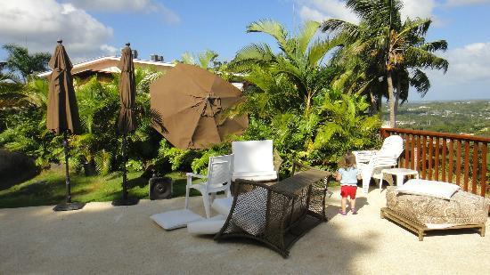 Rainforest Ocean View Inn: Nadie pendiente de la piscina, estuvo todo el domingo asi