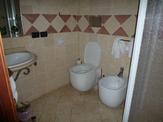 Agriturismo Corte Milone: Bagno piccolo, con un solo piano di appoggio inadeguato che corre sopra ai servizi igienici