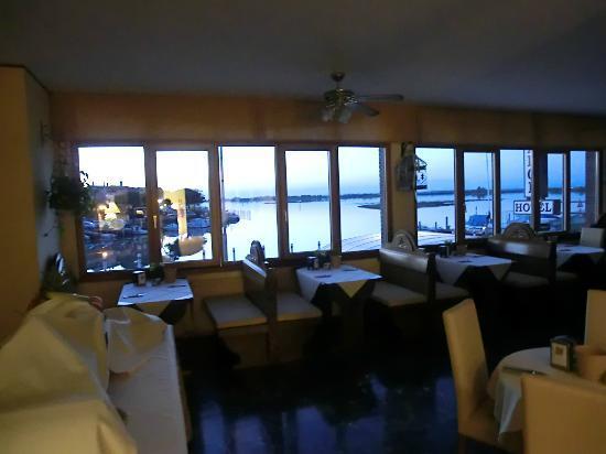 Hotel Carol: Sala con vista