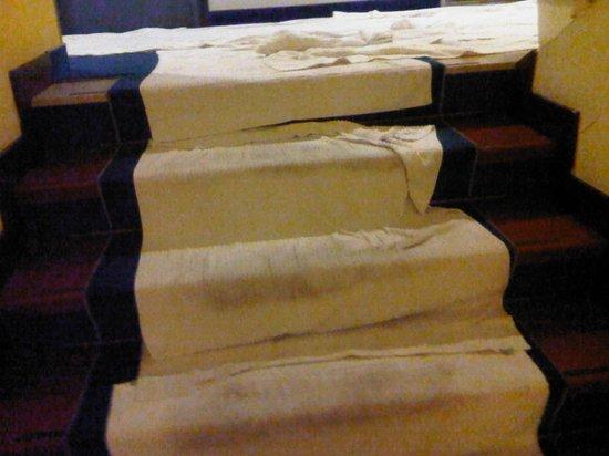 Hotel Maddalena : quelle propreté