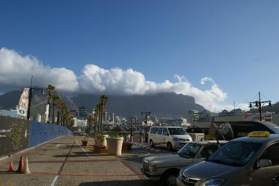 Easy Cape Town Tours: table mountain