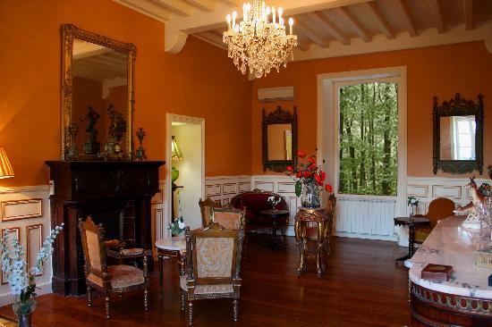 superbe salon, chambre d'hôte pau - picture of chateau estefani