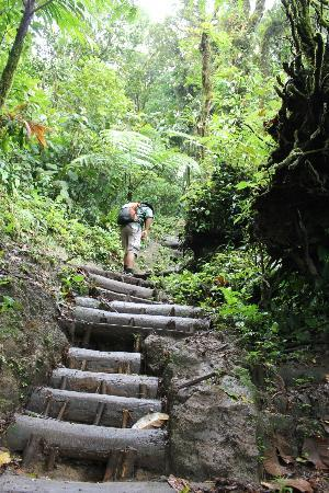 Cerro Chato ANC Park & Tuinen: Steep steps.